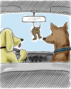 Two dogs (golden retriever and German shepherd) driving a vehicle with an air freshener that is in the likeness of a dog's butt.