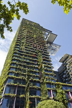 Our Fantastic Green Facade at One Central Park in Sydney 3 years on | Tensile Design & Construct