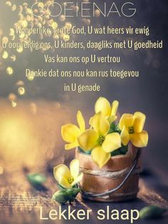 Good Night Blessings, Good Night Wishes, Evening Greetings, Afrikaanse Quotes, Goeie Nag, Scriptures, Prayer, Language, Inspirational