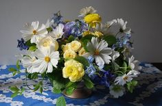 cosmos cornelia mcnamara flowers 10418992_498036803665828_8056094858048906468_n