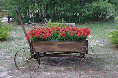 Cart of Flowers