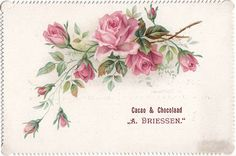 Vintage Flower Prints, Vintage Flowers, Rose Prints, Romantic Roses, Beautiful Roses, Vintage Pictures, Vintage Images, Decoupage Paper, Watercolor Rose