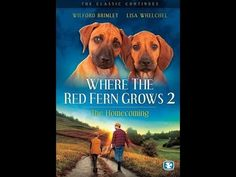 An embittered WWII veteran returns to his grandfather's home in the Louisiana woods. The old man helps his grandson readjust by giving him two hound dog pupp...