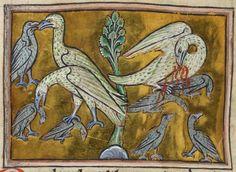 British Library Royal MS 12 C XIX (c1200-c1210) f48v