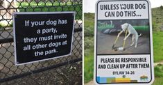 14 Hilariously Unorthodox Dog Signs To Spice It Up A Bit