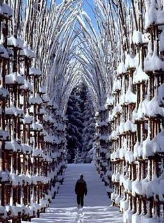 "Snow Cathedral, Norway~ I can hear Christoph if my head, ""I might cry... Flawless..."""