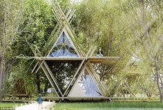 Free like a bird: This nest-inspired living space allows you to sleep in pods within the t...