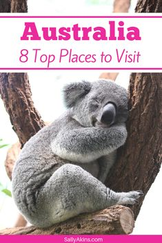 Planning a trip to Australia? Planning your itinerary can be tough, so here are some of the best places to visit in Australia (brand collaboration) Visit Australia, Australia Travel, Short City Breaks, Melbourne, Sydney, City Skylines, The Perfect Getaway, New Zealand Travel, Travel Information