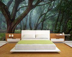 poster mural nature Forêt à air lugubre dans la chambre adulte