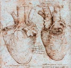 A sketch of the human heart by Leonardo da Vinci - Discovering da ...