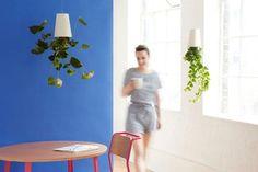 Nuevas Macetas Invertidas Sky Planters - Boskke Recicladas