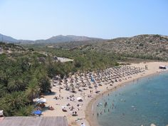 Vai Palm Tree Forest, the largest palm tree forest in Europe #vai #crete #aks #summer2014