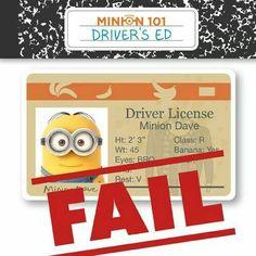 Minion 101 Driver's Ed