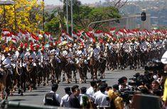JUIZ DE FORA SEGURA  : 10/05- Dia da arma de Cavalaria do E.B,Dia do guia...
