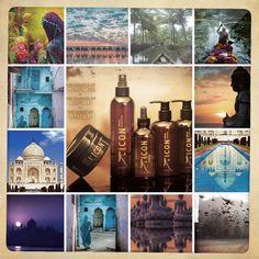 """Déjate cautivar por la gama exótica de icon, """"INDIA"""" . Enamórate de su aroma a ámbar y de sus innumerables beneficios para el cabello gracias a la aplicación de la centenaria medicina ayurvédica en cada uno de sus productos. Descubre una experiencia única y harás de tu cabello la mejor versión! http://tutemimas.com/16-icon-india"""