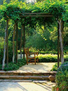 pergola en bois décorée de plantes grimpantes dans le jardin