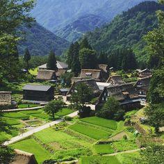 Picturesque village of Gokayama in Toyama. #japantravel #japanwalk #architecture #picturesque