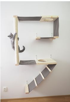 Quite the catification! Love it :)