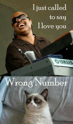 I just called to say I lover you - wrong number, crumpy cat #music #memes