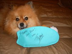 @PepperPom with Tillman Skateboard plush at @BlogPaws 2012