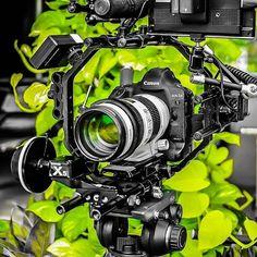 Camera Rig, Camera Lens, Camera Photography, Photography Equipment, Beautiful Indian Actress, Photo Tips, Rigs, Cinema, Movies