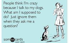 Ignore my dog?