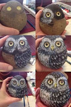 "Decoracion Hogar - Decoracion Diy-Manualidades - Comunidad - Google+ ""Painted owl rock, step by step"", ""Instead of rock, paint owl on ceramic egg or rou"