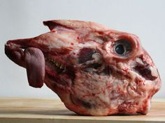 """Many a chef has waxed poetic about half a pig's head. Fergus Henderson writes that it is """"the perfect romantic supper for two,"""" but I happen to think that a lamb's head is more romantic than its porcine equivalent."""