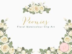 WCA79-ivory-peonies-floral-cliparts-borders
