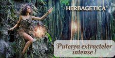 http://herbashop.ro/