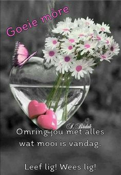 Good Morning Messages, Good Morning Greetings, Good Morning Wishes, Good Morning Inspirational Quotes, Good Morning Quotes, Lekker Dag, Afrikaanse Quotes, Goeie Nag, Funny Videos For Kids
