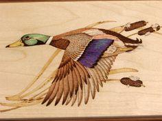 hand wood burning art   Home » Featured » Mallard Drake in Flight