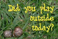 Did you play outside today? 10 Ideas for Nature Play