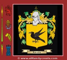 Raven Coat of Arms, Family Crest - Click here to view