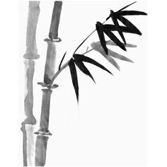 Sumi Bamboo Painting Sumi-e ink Drawing, Japanese Print, Asian Wall... ❤ liked on Polyvore featuring home, home decor, wall art, bamboo wall art, ink painting, bamboo home decor, ink drawing and rice paper painting