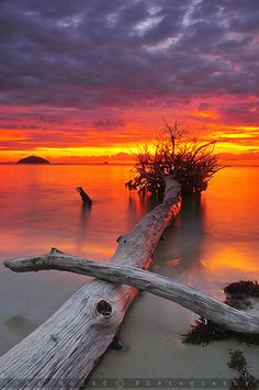 Sunset Borneo, Sabah, Malaysia Showcase of Beautiful Photography Beautiful Sunset, Beautiful World, Beautiful Images, Beautiful Beaches, Pretty Pictures, Cool Photos, Cool Pictures Of Nature, Nature Pics, Landscape Photography