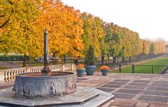 Fall in the Main Fountain Garden at Longwood Gardens!