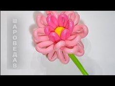 """✿""""Астра"""", """"Хризантема"""" из воздушных шаров (ШДМ)./Chrysanthemum of balloo..."""