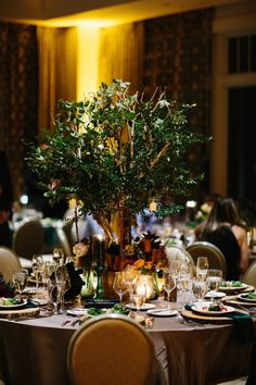 Days Remembered by ND is a premier Tampa wedding planning and event planning company offering several packages and dedicated to creating the perfect day. Wedding 2017, Wedding Table, Rustic Wedding, Event Planning, Wedding Planning, Branch Centerpieces, Branch Decor, Greenery, Table Decorations