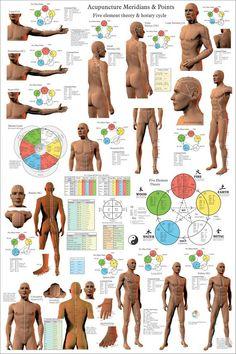 Holistic Health Remedies Acupuncture Meridian Points Poster 24 X 3 Acupuncture Benefits, Acupuncture Points, Acupressure Points, Meridian Acupuncture, Meridian Massage, Reiki, Developement Personnel, Meridian Points, Tongue Health