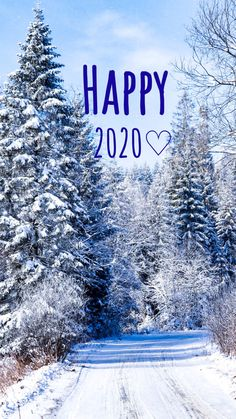 Wallpaper ideas in the new year happy 2020 winter wallpaper January snow picture trees switzerland Picture Tree, Snow Pictures, Winter Wallpaper, Wallpaper Ideas, Switzerland, January, Around The Worlds, Trees, Mountains