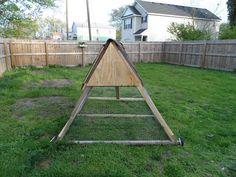 A frame chicken coop!