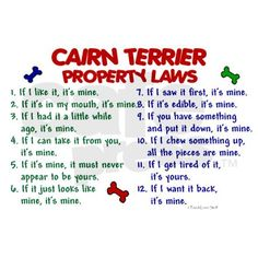 Cairn Terrier Property Laws 2 Journal on CafePress.com