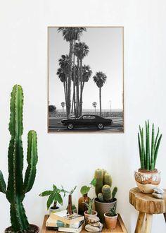 Des plantes, des cactus, une affiche vintage.. Voilà un coin déco qui sent bon la Californie ! Ambiance Urban Jungle pour Urban deco lovers :) #décoration #bonjourbibiche