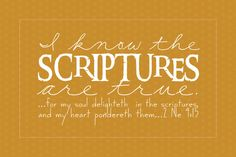 for my soul delighteth in the scriptures and my heart pondereth them