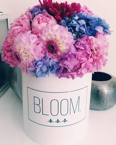 Love spring, flowerbox. Flowerbox, cvijece u kutiji