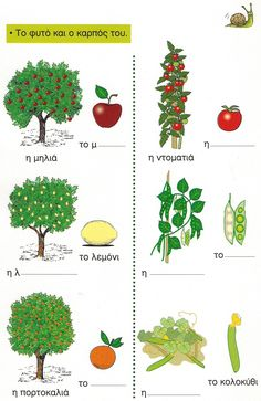 plants First Grade Science, Greek Language, Plant Science, Bingo Cards, Fruits And Vegetables, Book Activities, Healthy Eating, Herbs, Nutrition