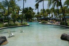Photos of Radisson Aruba Resort, Casino & Spa, Palm/Eagle Beach - Resort Images - TripAdvisor