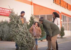 Keep that tree green ... all the season long. We tell you how.
