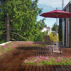 1000 Images About Flat Roof Decks And Patios On Pinterest